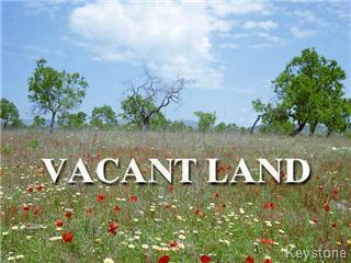125 Morley Avenue in Winnipeg - Vacant Land For Sale : MLS# 202101472