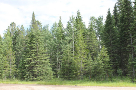 19 99 Acres Twp Rd 282, Rural Rocky View County