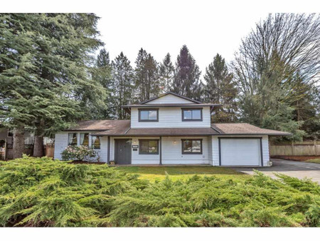 19900 48 A Avenue in Langley - House For Sale : MLS# r2562074