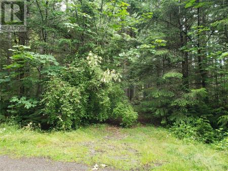 2276 Dovedale Rd, Shawnigan Lake, Shawnigan Lake, British Columbia, V0R2W3