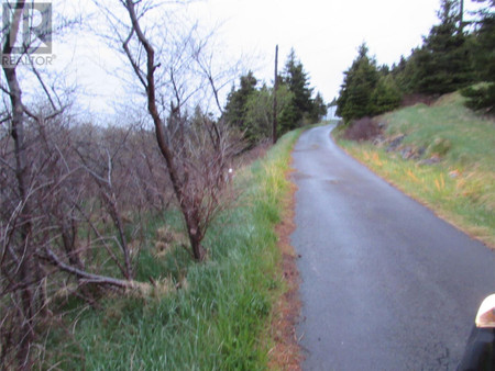 47 57 Goat Shore Road, Avondale, Newfoundland, A0A1B0
