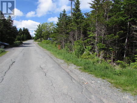 52 Old Road, Conception Harbour, Newfoundland, A0A1Z0