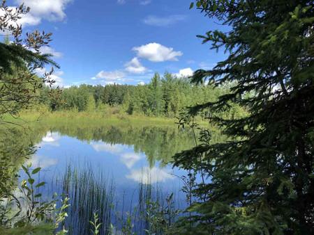 Hwy 13 Amp Rge Rd 55, None, Rural Wetaskiwin County, Alberta, T0C0T0