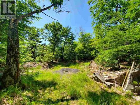 Lot 67 Forest Point Loop, Labelle, Nova Scotia, B0T1E0