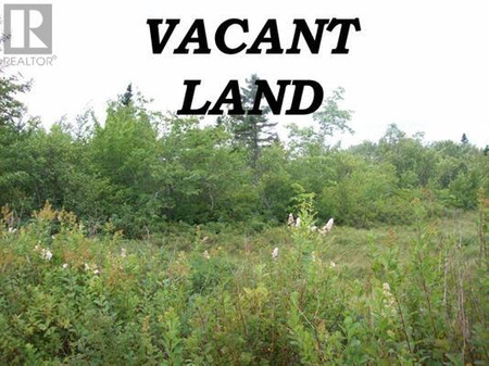 Lot Highway 331, East Port Medway, Nova Scotia, B0J2H0