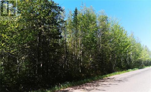Lot Route 945, Haute Aboujagane, New Brunswick, E4P5T3