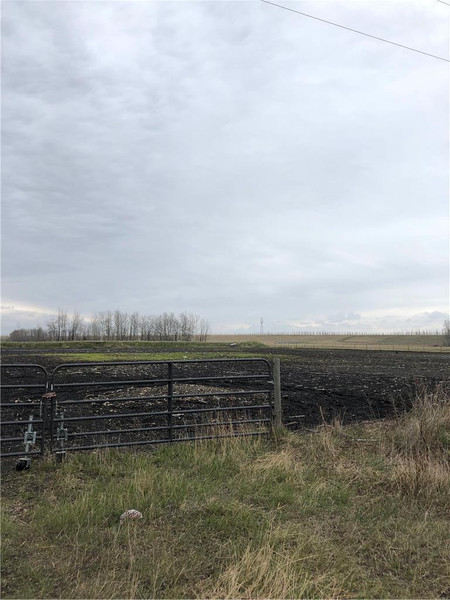 Plessis Rd S, RM of Springfield, Springfield Rm, Manitoba, R3X1W3